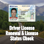 Online Driver License Renewal Service